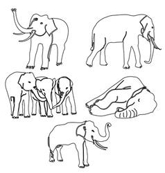 elephant activities vector image