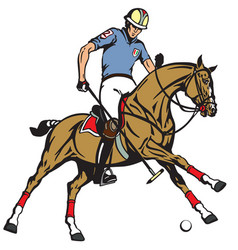 equestrian polo sport vector image