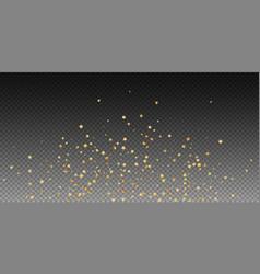 gold stars random luxury sparkling confetti scatt vector image