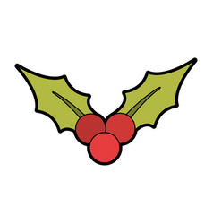 holly berries and leaves christmas related icon vector image