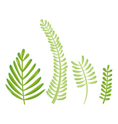 leafs palms ecology set icons vector image
