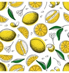 Lemon seamless pattern Drawing lemon vector