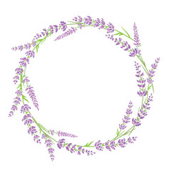 Purple green lavender flowers wreath arrangement vector