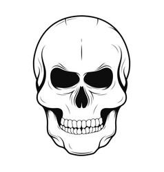 Skull in monochrome and vintage tattoo style vector