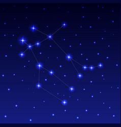 the constellation gemini vector image