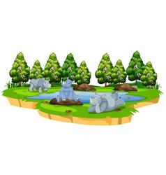 wild rhinoceros in nature vector image