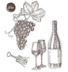 wine set hand drawn a bottle of wine a glass a vector image