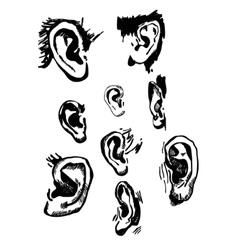 Human ears set realistic hand drawn vector image