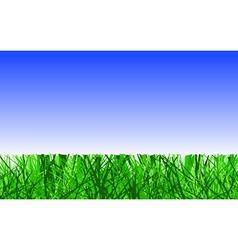 mown lawn vector image vector image