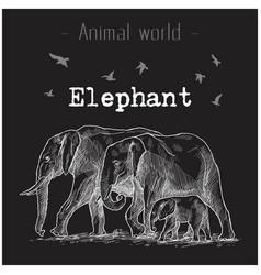 animal world elephant hand drawing image vector image