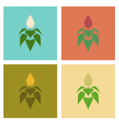 Assembly flat nature herb amaranthus vector