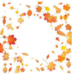 Autumn background with golden autumn leaves vector