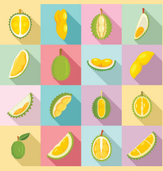 Durian icons set flat style vector