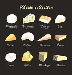 Graphic beautiful collection of cheeses vector