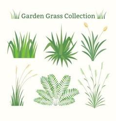 Grass collection vector