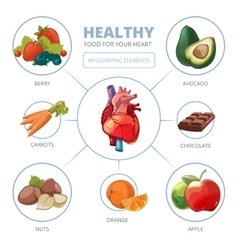 Heart care infographic Healthy foods vector