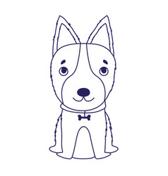 little dog with collar bone sitting cartoon pets vector image