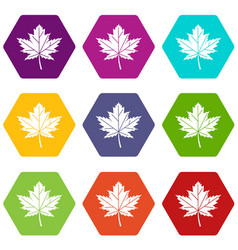 maple leaf icon set color hexahedron vector image
