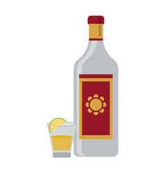 Tequila mexican drink vector