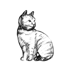with the image of a cat hand vector image
