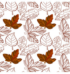 autumn graphic with color stylize vector image vector image