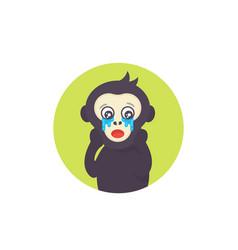 ape crying monkey vector image