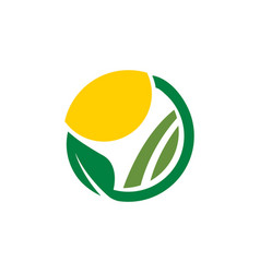 clean farm agriculture logo design concept vector image