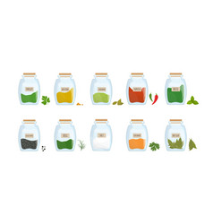 Collection spices stored in clear closed jars vector