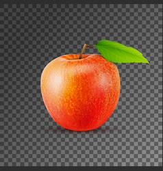 Green apple on transparent background vector