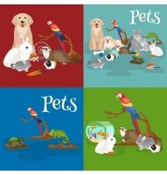 Home pets set cat dog parrot goldfish hamster vector image vector image