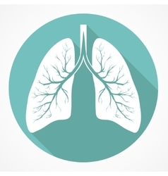 Human Lung flat icon vector