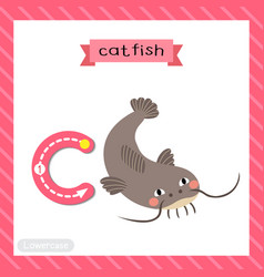 Letter c lowercase tracing funny catfish vector
