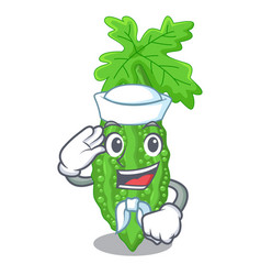 Sailor bitter melon isolated on a mascot vector
