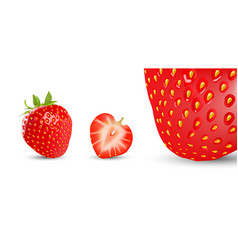 Strawberry and half isolated on white vector