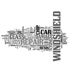 Windshield crack repair text word cloud concept vector