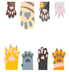 cartoon different cat paw card background vector image