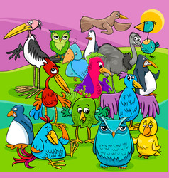 bird characters group cartoon vector image