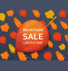 autumn sale discount background with a red yellow vector image
