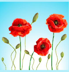 background or card poppy and sammer day vector image