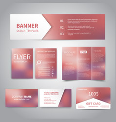 banner flyers brochure business cards vector image