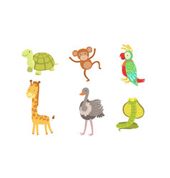 cute african animals set turtle monkey parrot vector image