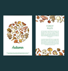hand drawn mushrooms card flyer or vector image