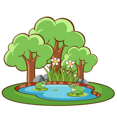 isolated picture two green frogs in pond vector image