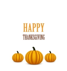 Thanksgiving Day card with pumpkins vector image