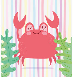 Under sea crab algae wide marine life vector