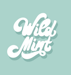 wild mint hand drawn lettering isolated vector image