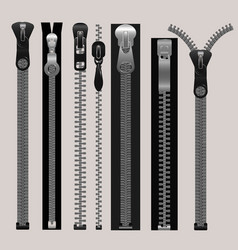 Zippers fastener set vector