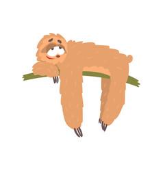 cute happy cartoon lazy sloth character lying on vector image