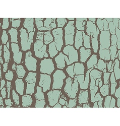 Bark close up texture grunge vector image vector image