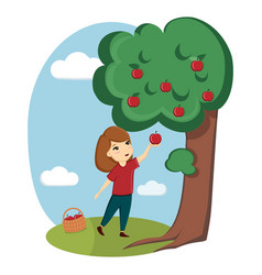a girl collects apples from a tree nature vector image